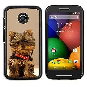 All Phone Most Case / Oferta Especial Duro Teléfono Inteligente PC Cáscara Funda Cubierta de proteccion Caso / Hard Case Motorola Moto E // Yorkshire Terrier Small Dog Puppy