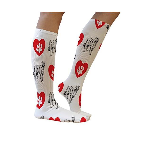 Funny Knee High Socks Akbash Dog Heart Paws Tube Socks Women & Men 1 Size 5