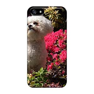 Angel The Bichon Case Compatible With Iphone 5/5s/ Hot Protection Case