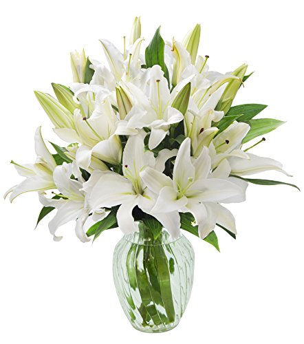 - KaBloom Pure Love White Lily Bouquet of 13 White Lilies with Vase