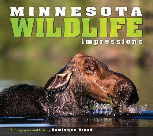 Minnesota Wildlife Impressions (Impressions (Farcountry Press))