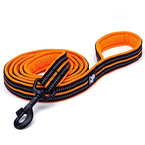 Pettom Pet 3M Reflective Nylon Dog Leash, Durable Dog Rope Leader Strap for Medium and Large Puppy Walking Training (Orange, 3.6 Ft, 6/8 Inch Width)
