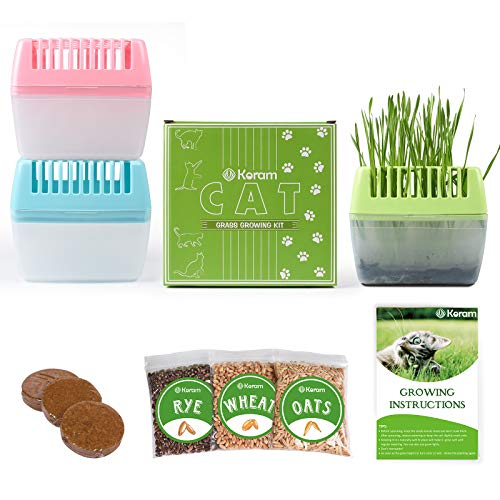KORAM Cat Grass Growing Kit Organic Pet Grass Kit with Oats Wheat Seeds Trays & Soil Natural Hairball Control Healthy Treat for Cats