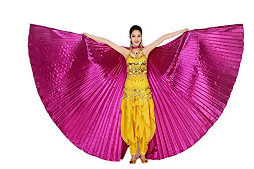 Exotic Dancer Costumes - 6