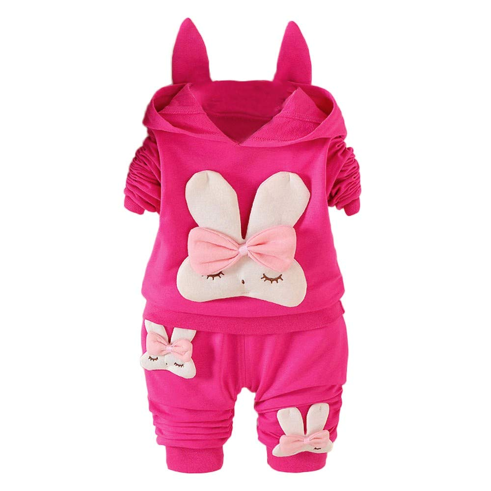 Toddler Baby Girls Sweatshirt and Trousers Long Sleeve Rabbit Print Hooded Pullover Tops Pants Set New