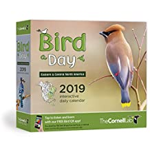 Bird-A-Day 2019 Daily Calendar: Eastern & Central North America