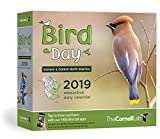 Bird A Day 2019 Daily Calendar: Eastern & Central North America