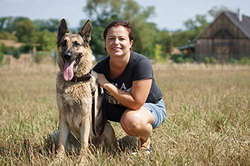 LEATHERBERG Leather Dog Training Leash - Brown 6 Foot x 3/4 Dog Walking Leash Best for Medium Large Dogs, Latigo Leather Dog Lead & Puppy Trainer Leash