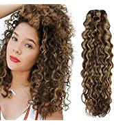 Hetto Curly Hair Extensions Clip in Brown Highlight Blonde Wavy Hair Extensions Human Hair Clip i...