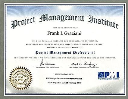 Amazon.com : PMP (Project Management Professional) Online ...