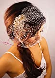Leslie Li Crystal Bridal Birdcage Veil with Gold Crystal and Pearl Hair Comb One Size Ivory 27-71486