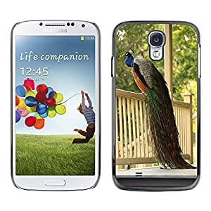 Hot Style Cell Phone PC Hard Case Cover // M00116300 Peacock Porch Birds Beautiful // Samsung Galaxy S4 S IV SIV i9500