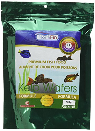 Top recommendation for kelp wafers fish food