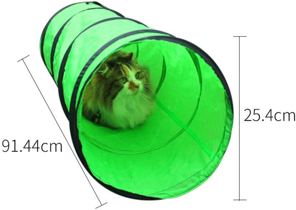 FoggDanieler Túneles para Gatos,Artículos para Gatos,Tubos y túneles para Animales pequeños,Juguetes Gato,Juguetes Gatos interactivos,Cat House,Gatos Accesorios,Conejos,Túneles,Verde: Amazon.es: Productos para mascotas