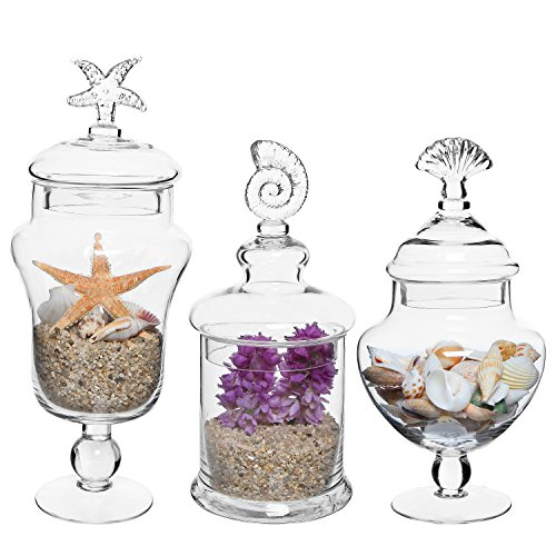 MyGift Set of 3 Seashell Handle Clear Glass Apothecary Jars/Food Storage Canisters/Decorative Centerpieces -