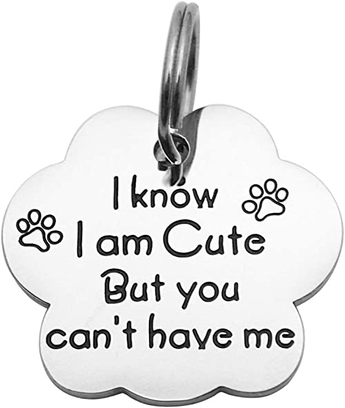 Hand stamped metal Dog ID tag