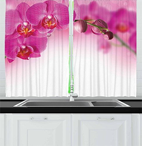 "Ambesonne Spa Kitchen Curtains, Blossoming Orchid Branch Exotic Nature with Feng Shui Elements Spa Garden Botany, Window Drapes 2 Panel Set for Kitchen Cafe Decor, 55"" X 39"", Pink Ombre"