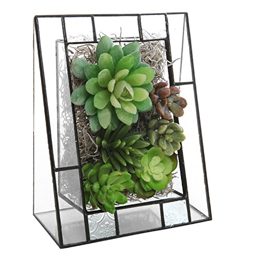 gled Clear Glass Terrarium Display Stand Box for Airplants / Faux Succulent Plants ()