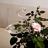Quaanti Plant Waterer Plant Self Watering Bulbs Globes Automatic Hand-Blown Glass Watering Bulbs Mini Decorative Design for Patio, Lawn, Garden Pot Or Planter (Clear)