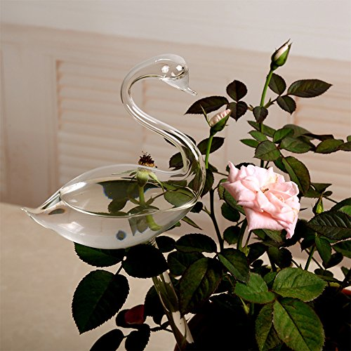 Euone ♛ Watering Device, for Garden Plant Watering Device Indoor Automatic Cute Swan Snail Swan Glass