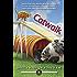 Catwalk (Animals in Focus Mystery Book 3)