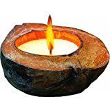 Lamplight TIKI 1412109 Citronella Coconut Candle, 3.3-Ounce (Discontinued by Manufacturer)