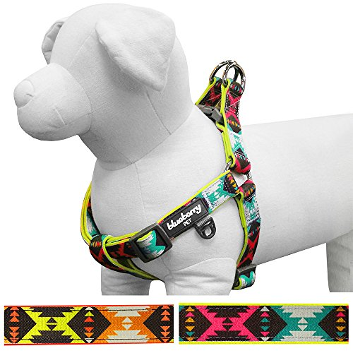 Blueberry Pet 2 Colors Soft & Comfortable Step-in Vintage Tribal Pattern Padded Dog Harness, Chest Girth 23.5
