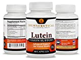 Premium Lutein Vision Support Supplement Plus Best Eye Care eBook 20mg of Healthy Lutein Vitamin A Zinc Bilberry Extract Grape Seed Extract for Strained Red or Dry Eyes - 60 Capsules Discount