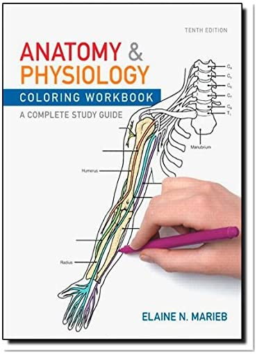 Amazon Best Sellers: Best Physiology