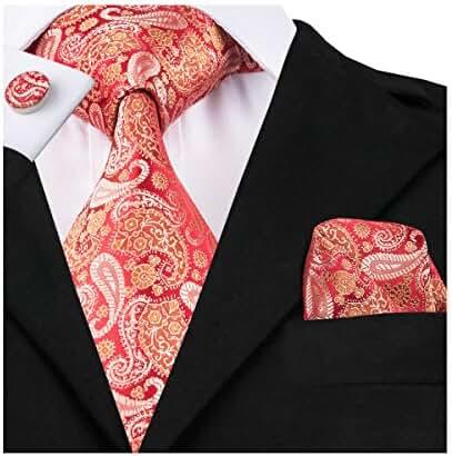 Hi-Tie Red Silk Tie for Men Paisley