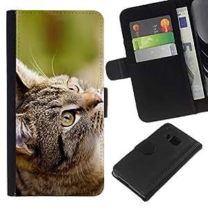 All Phone Most Case / Oferta Especial Cáscara Funda de cuero Monedero Cubierta de proteccion Caso / Wallet Case for HTC One M9 // Gray Cat