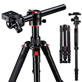 K&F Concept TM2515T Professional 60 inch DSLR Camera Tripod Horizontal Aluminium Tripods Portable Monopod with 360 Degree Ball Head Quick Release Plate for Canon Nikon Sony DSLR Cameras