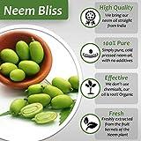 Organic Neem Bliss 100% Pure Cold Pressed Neem Seed