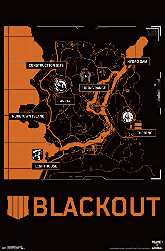 Trends International Call of Duty: Black Ops 4 - Blackout Map Wall Poster, 22.375