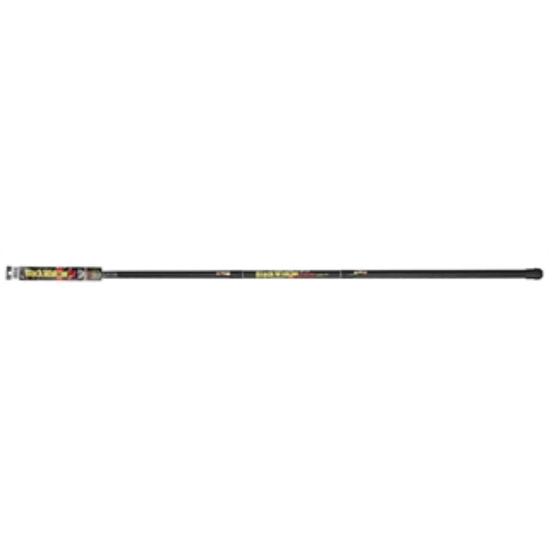 B M BW6RR Black Widow Readyrig 20 Ft Fishing Pole