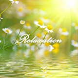 Relaxation: 101 Relaxing Nature Sounds Relaxation and Tibetan Chakra Meditation Music for Relaxation Meditation, Deep Sleep, Studying, Healing Massage, Spa, Sound Therapy, Chakra Balancing, Baby Sleep, Serenity and Yoga