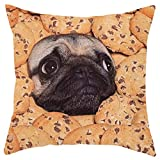 Weiliru Children Square Decorative Throw Pillow Cases Soft Short Plush Outdoor Cushion Covers 18×18 for Sofa Bedroom