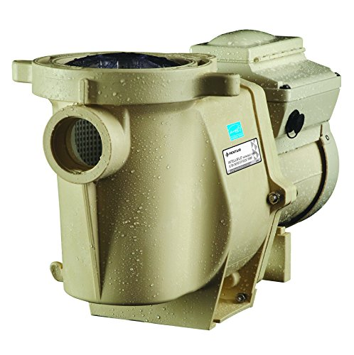Pentair 011018 IntelliFlo Variable Speed Pool Pump - 3 HP - 230 V