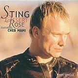 Desert Rose by Sting (2000-04-18)
