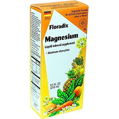 Salus-Haus Floradix Magnesium Liquid