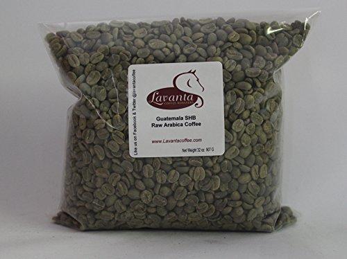 Lavanta Coffee Roasters Guatemala SHB Tactless Trade Coffee, Green, 2 lb