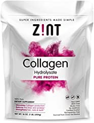 Premium Collagen Peptides (1 lb) | Grass-Fed Non-GMO Paleo-Friendly Hydrolyzed Protein