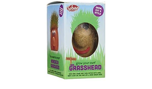 Grass Head-Monsieur Herbe Tobar Jouet Neuf M
