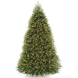 National Tree 9 Foot Dunhill Fir Tree with 900 Clear Lights, Hinged (DUH-90LO)