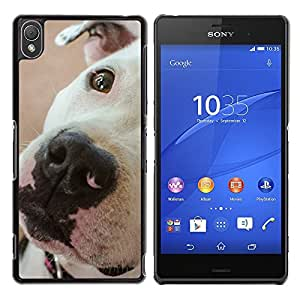 Vortex Accessory Hard Protective Case Skin Cover For Sony Sony Xperia Z3 - American Pit Bull Terrier Dog Breed