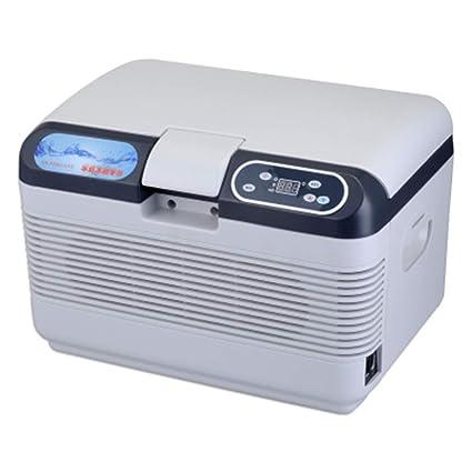 Amazon.es: fxpczbx Refrigerador del Coche Caja Eléctrica Fría Mini ...