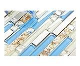 tiles for bathrooms TST Glass Inner Conch Tile Beach Style Blue Cream White Brushed Steel Art Mosaic Kitchen Backsplash Bath Decor TSTNB06 (1 Sample 12x12 Inches)