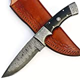 Cheap JNR TRADERS Handmade Damascus Steel Skinner Knife Hunting Bushcraft San Mai Blade with Leather Sheath VK6019
