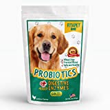 Fitapet Dog Probiotics Chewable for Dogs with Sensitive Stomachs, Gas or Diarrhea – Healthy blend of probiotics, digestive enzymes and prebiotics to give best results – 60 soft chews