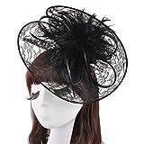 ZYLLGF Feather Fascinators Cocktail Tea Party Headwear for Women Wedding Accessory (FN3-Black)